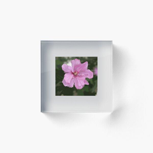 Flower Bloc acrylique