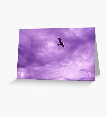 Bird in the sky Greeting Card