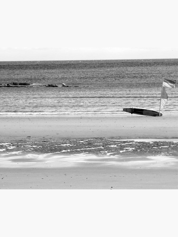 Windy Beach by robsteadman