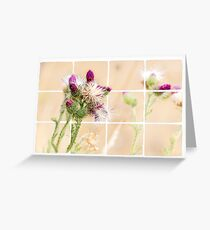 Colourful Thistle Mosaic  Greeting Card