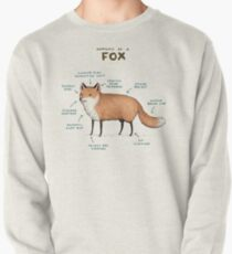 Anatomy of a Fox Pullover