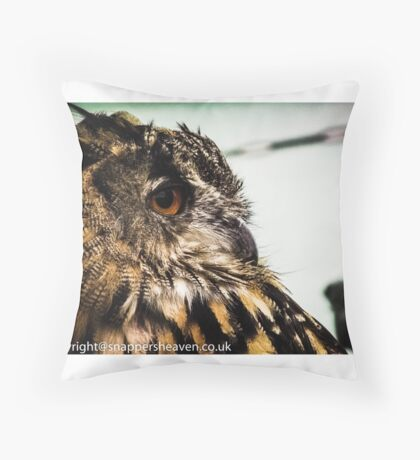 Tawny owl in colour 1 Throw Pillow