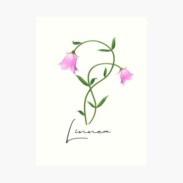 Nordic Wildflower Linnea Twinflower Pretty Pink Flowers floral Art Print