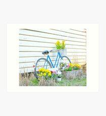 Vintage Bicycle .... Malvern Star. Art Print