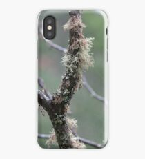 lichen garden iPhone Case/Skin