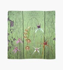 Cerise Spider Orchid on Green Painted Wall, native orchids of Western Australia. Scarf
