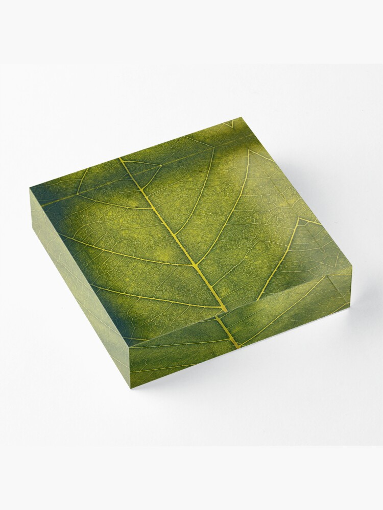 Alternate view of Leaf - HD Nature Acrylic Block