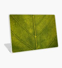 Leaf - HD Nature Laptop Skin