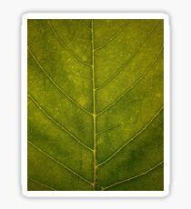 Leaf - HD Nature Sticker