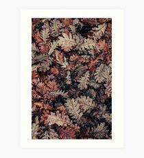 Dried Autumn Leaves - HD Nature Art Print