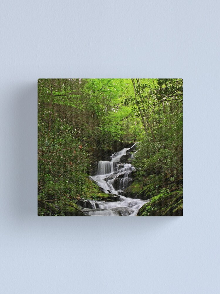 Alternate view of Roaring Fork Falls Canvas Print
