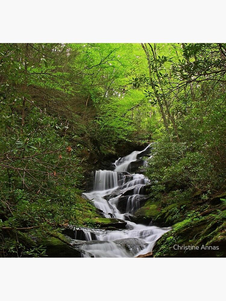 Roaring Fork Falls by 2Bricks
