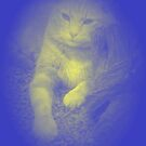Laying And Wondering-Cat Thoughts by Michelle Scott