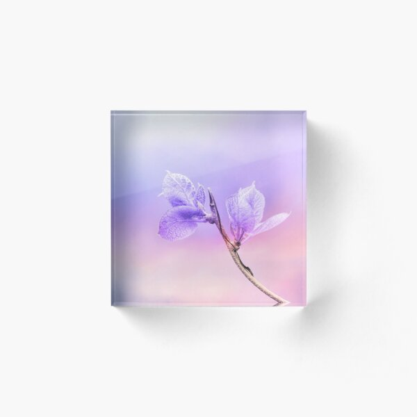 Charming Baby Leaves In Purple Acrylic Block