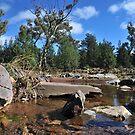 Flinders Creek by Bryan Cossart