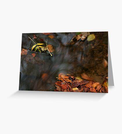 river in autumn III Greeting Card