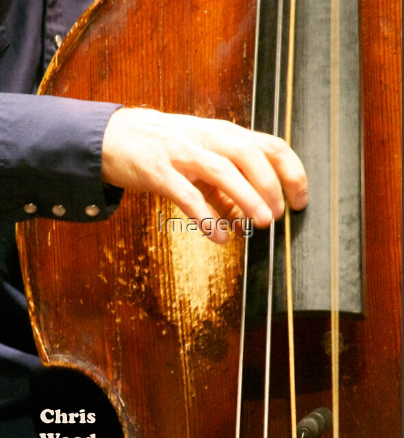 Chis Wood--Basshand by Imagery