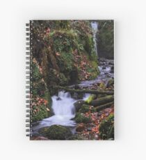 Dollar Glen Spiral Notebook