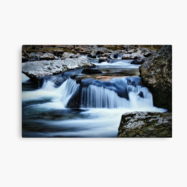 The Pigeon River Canvas Print