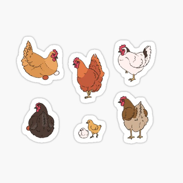 Chicken Sticker Set Sticker