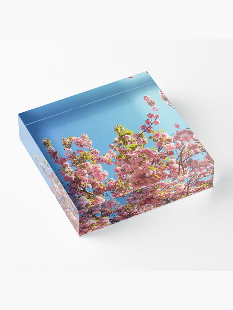 Alternate view of Mothers Day Floral Gift - Cherry Blossoms Photography Acrylic Block