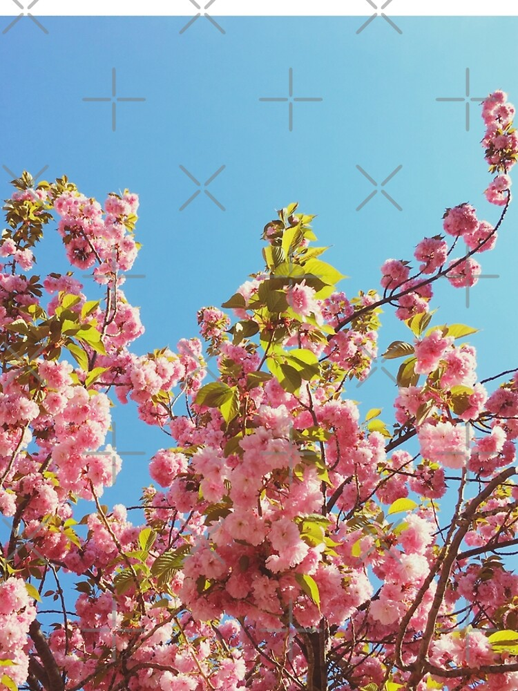 Floral Gift - Cherry Blossoms Photography - Gardener Present by OneDayArt