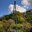 Mandela Bridge by Tom Gomez