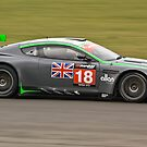 Aston Martin DBRS9 (Wright/Bentwood) by Willie Jackson