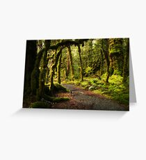 Enchanted Forest - Fiordland National Park Greeting Card