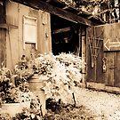 The Antique Barn by Jeanne Sheridan