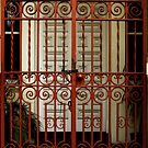 Union Bank Gate - Quay St Rockhampton QLD Australia  by Gryphonn