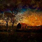*the barn* by funkymarmalade