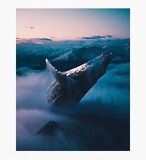 Ollie Photographic Print