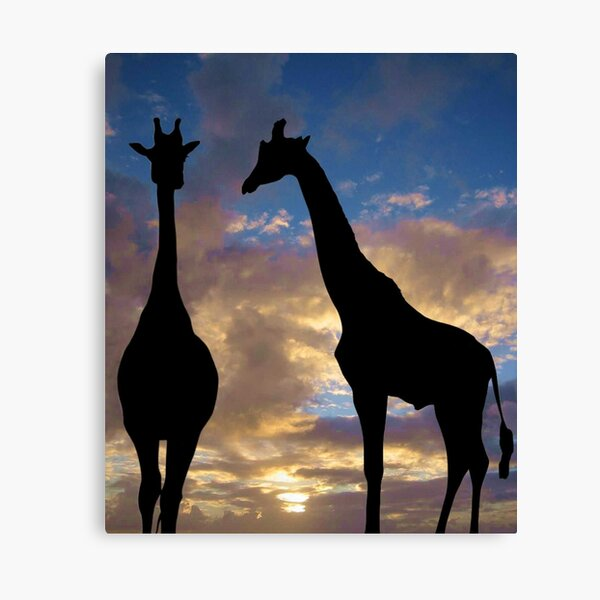 The winner by a neck Canvas Print