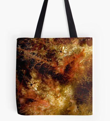 Tangler Pair Tote Bag