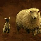"""""""Just Love Counting Sheep ..."""" by Rosehaven"""