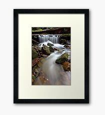 """Over the Log"" Framed Print"