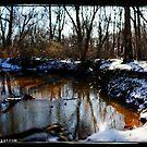 Iron Lake by busidophoto