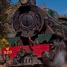 Hotham Valley Steam Train by Peter Rattigan