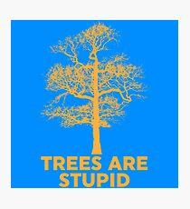 Trees are Stupid Photographic Print