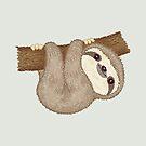 Sloth on the tree by Toru Sanogawa