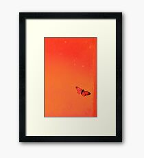 To me it's a beautiful tiny butterfly... (Orange tones) Framed Print