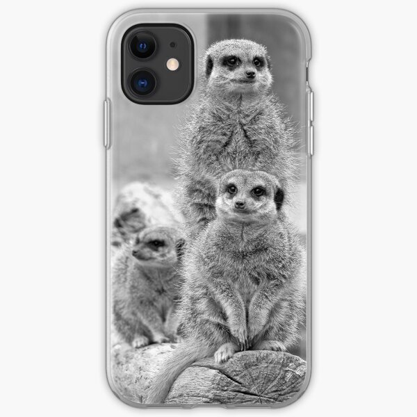Meerkats on a look out iPhone Soft Case