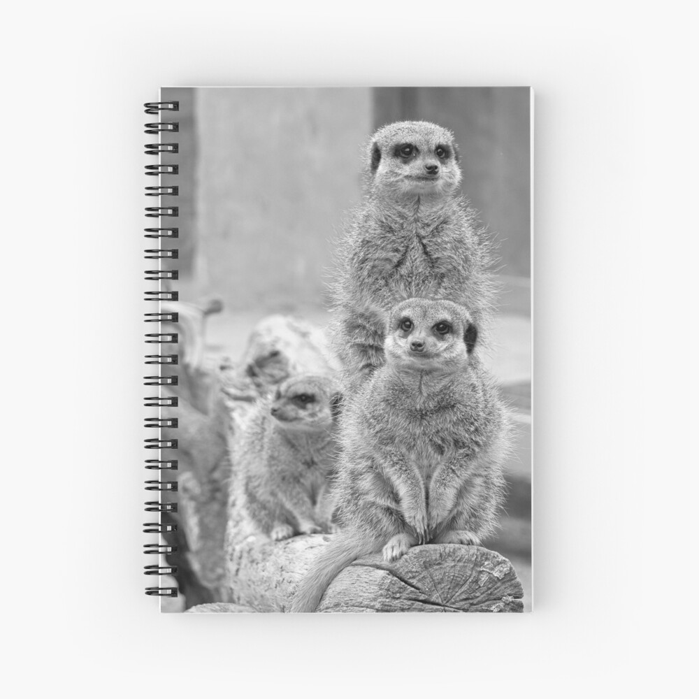 Meerkats on a look out Spiral Notebook