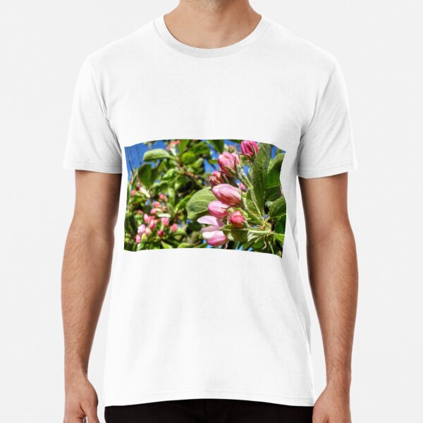 Apple Blossom In Bud - Early Spring Premium T-Shirt