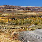 Fall in the South Eastern Oregon by Julia Washburn