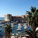 Dubrovnik Croatia by Dale Lockridge