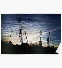 Cranes in the Sunset Poster