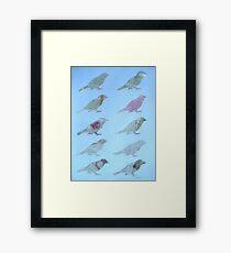 Wordy Birdies Framed Print