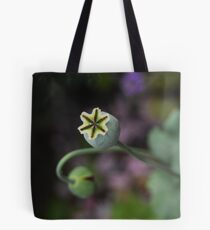 Poppy seed heads Tote Bag
